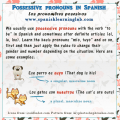 How to use Spanish possessive pronouns