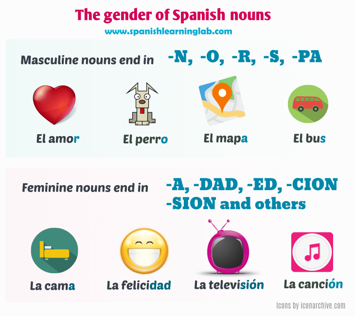 The gender of Spanish nouns - masculine or feminine words