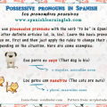 Spanish possessive pronouns rules and sentences