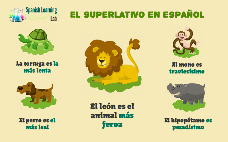 The superlative in Spanish rules and examples
