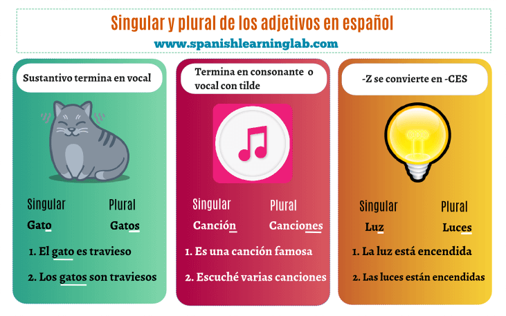 Singular and Plural nouns in Spanish basic rules and examples