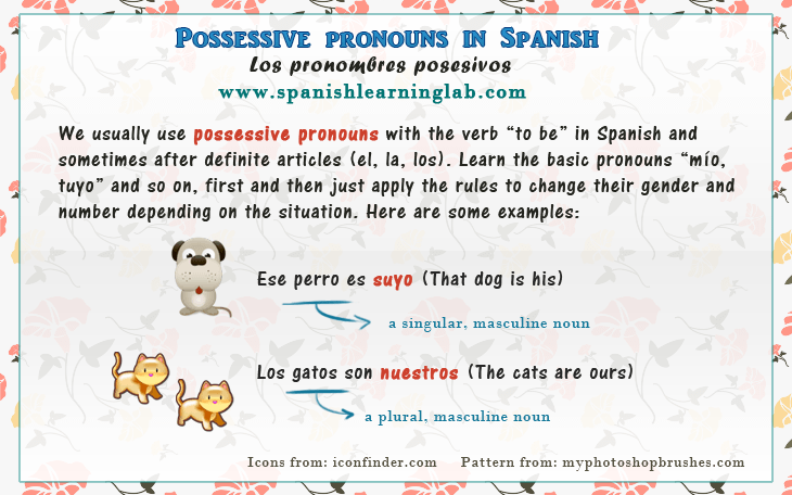 Spanish Possessive Pronouns Chart Sentences Spanishlearninglab