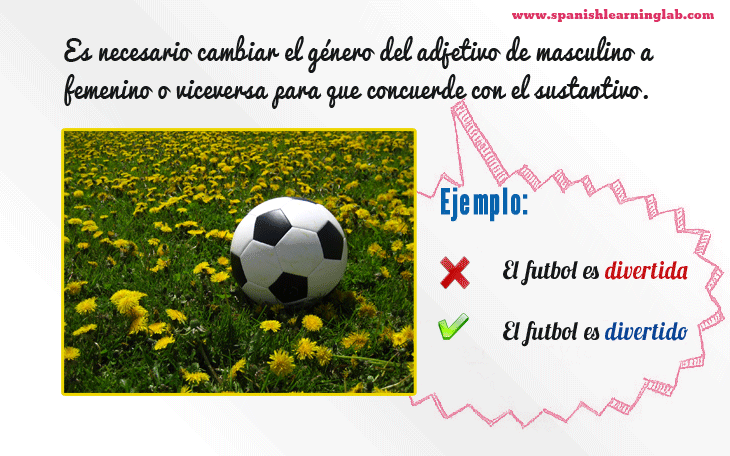Spanish noun-adjective agreement rules and examples