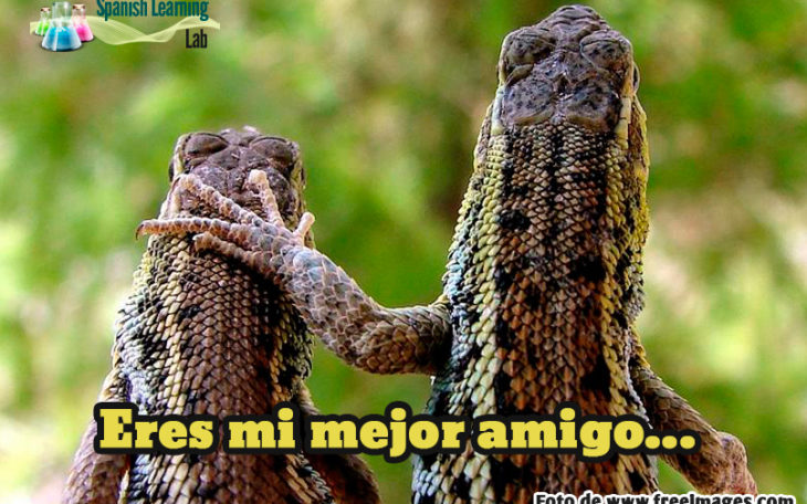 Making Friends in Spanish: Introductions and Greetings