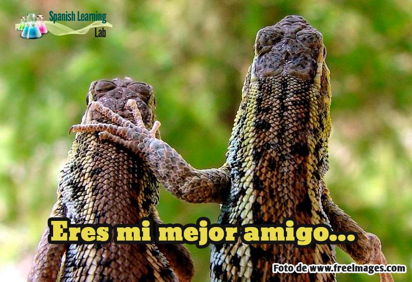 Haciendo amigos en español ejercicio de escucha
