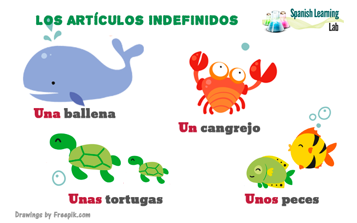 Los artículos indefinidos en español