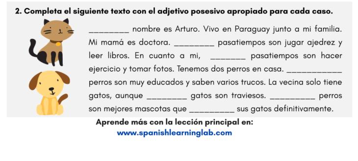 los adjetivos posesivos en español hoja de trabajo possessive adjectives in Spanish pdf workshet